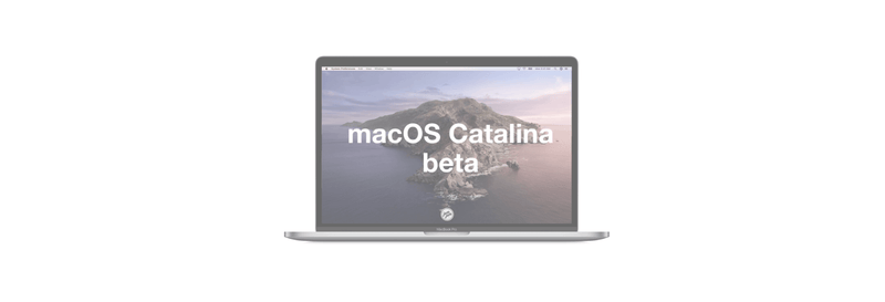 How to download and install macOS Catalina  developer beta 4 to your Mac