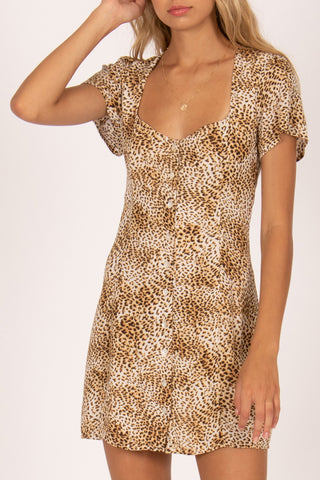 Iman Animal Tan Printed SS Mini Dress