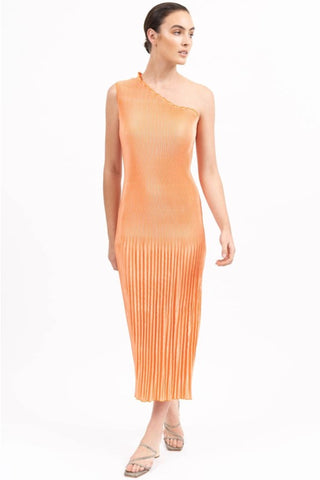 Soiree One Shoulder Orange Pleated Maxi Dress