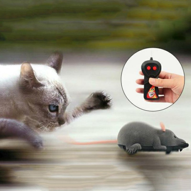Mouse Hunt Cat Toy