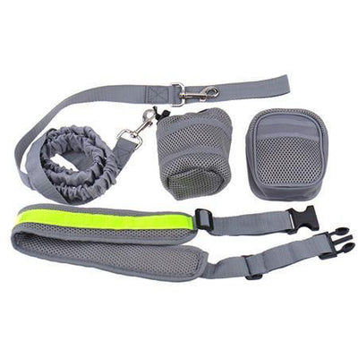 Hands Free-Elastic Dog Leash - Better Day