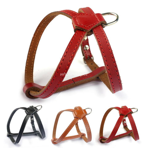 Leather Small Dog Cat Harness Puppy Harnesses