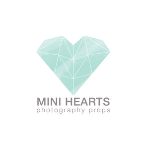 Mini Hearts Photography Props