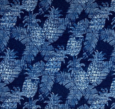 Blue Pineapples Outdoor Cushion Cover