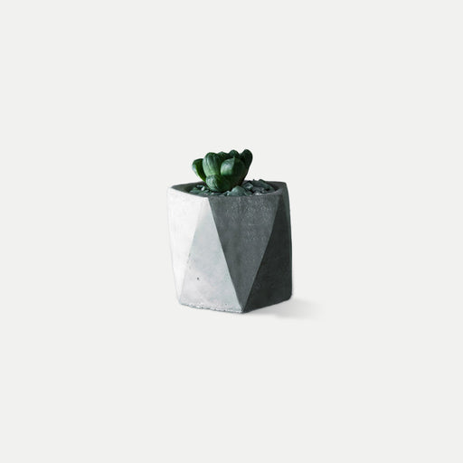 geometry style concrete pot plant
