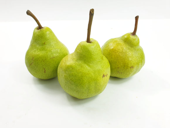 Packham Pear (4pcs) XXL