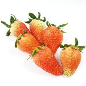 Korean Strawberry (350G) (L)