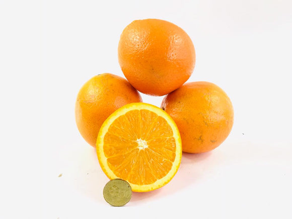 South African Unifrutti Navel Oranges (L)6pcs