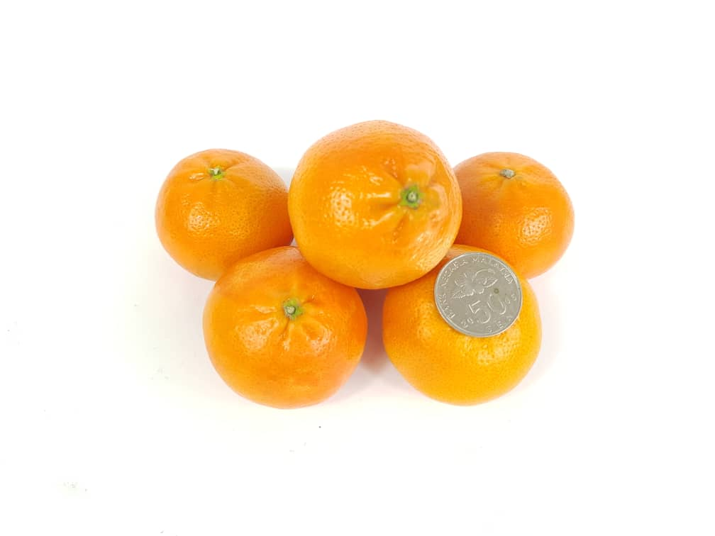 South african tangerines