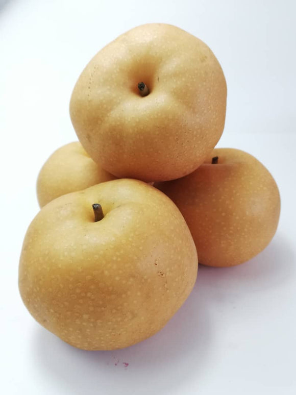 Korean Singo Pear (L size) - 2pcs