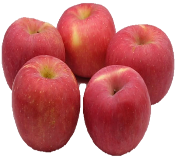 China Red Fuji Apple (5pcs)