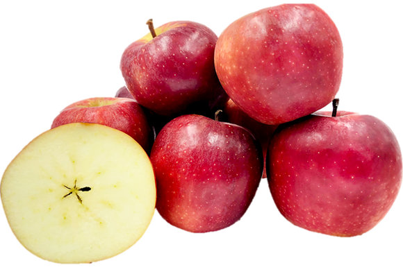 New Zealand Queen Apple (5pcs)