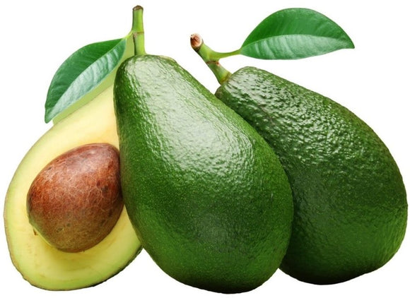 Aus Avocado Shepherd 1pcs