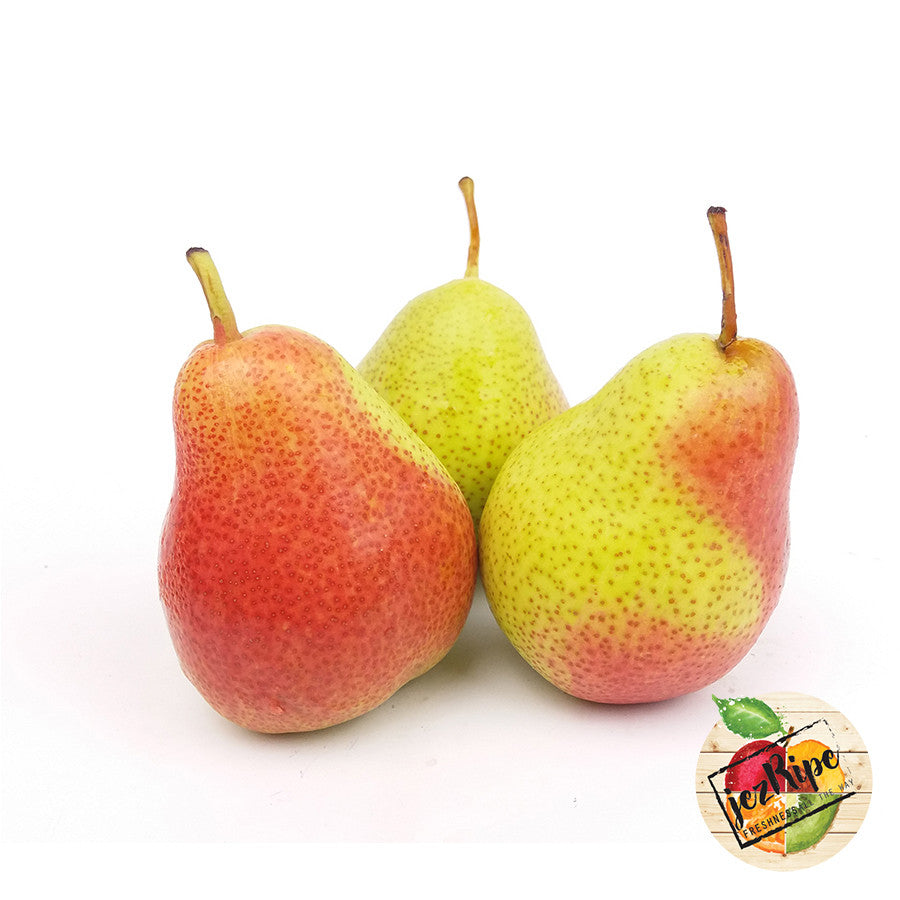 South African Forelle Pear