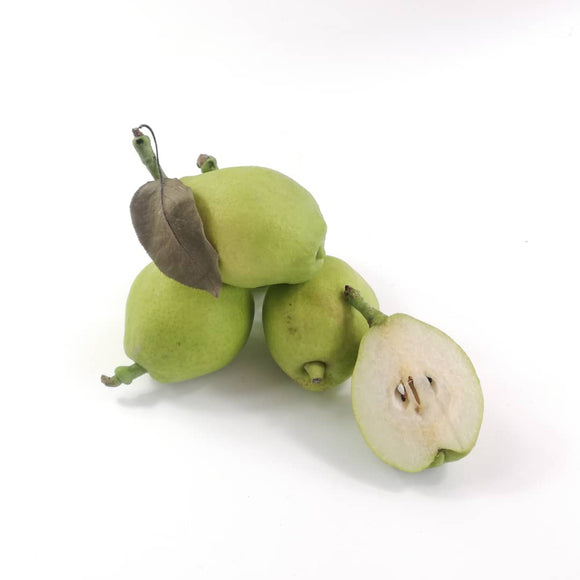Fragrant Pear 1kg (5-6 pcs)
