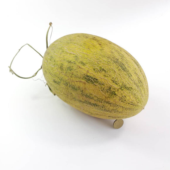 China Hami Melon (Ba Liu Wang)