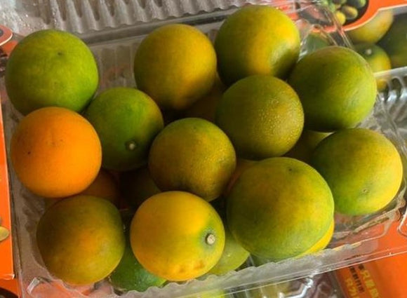 China Kamquat Mandarin (450g)