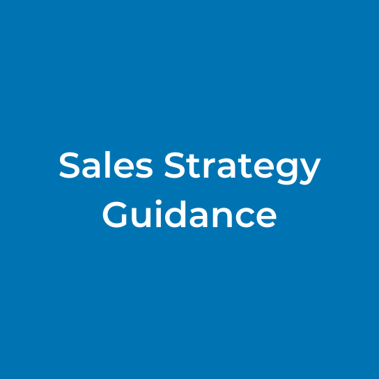 Sales Strategy Guidance