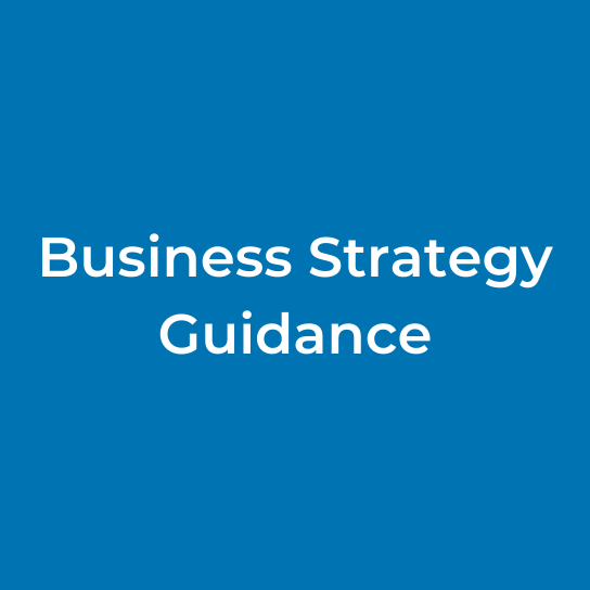 Business Strategy Guidance