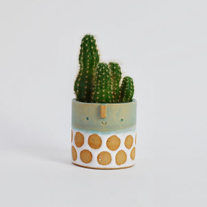 Mini Succulent Pot - Turquoise Green & White Spot