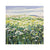 Anglesey Hedgerow Original Painting by Janet Bell