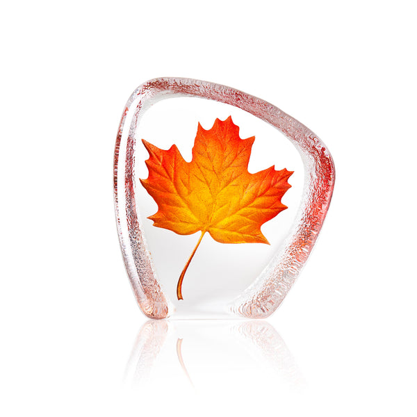 MÅLERÅS | Global Icons | Maple Leaf | Red