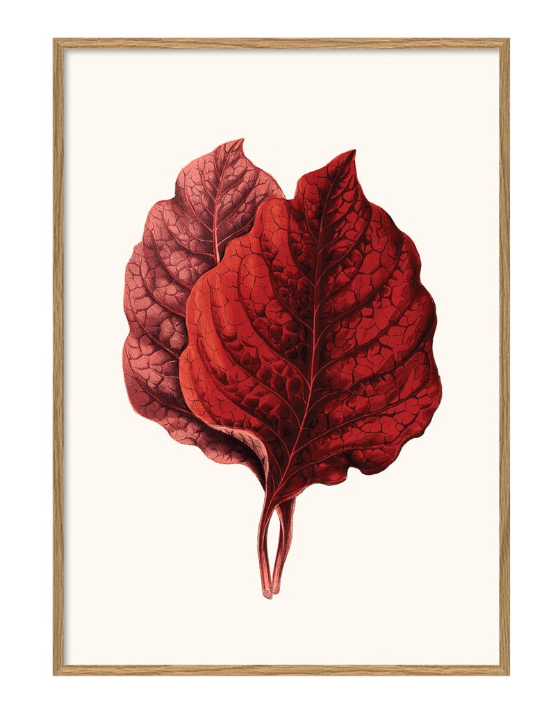 THE DYBDAHL CO | Leaves #6201 | Canvas | 30x40cm