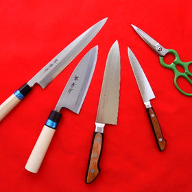Japanese & European Style 4 Knife Set + Kitchen Scissors