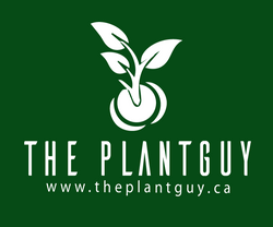 The PlantGuy
