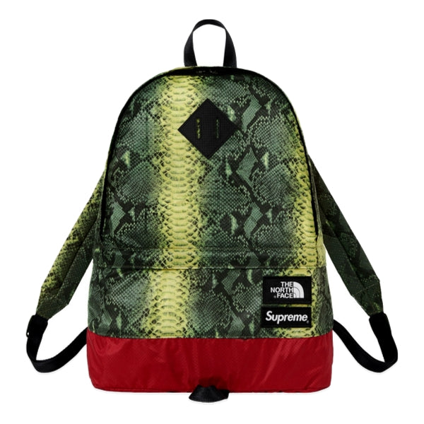 SUPREME TNF LIGHTWEIGHT DAY PACK -GREEN