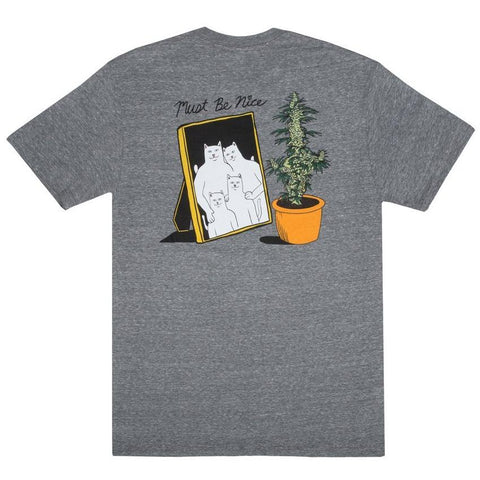 RipNDip FAMILY REUNION TEE -GREY