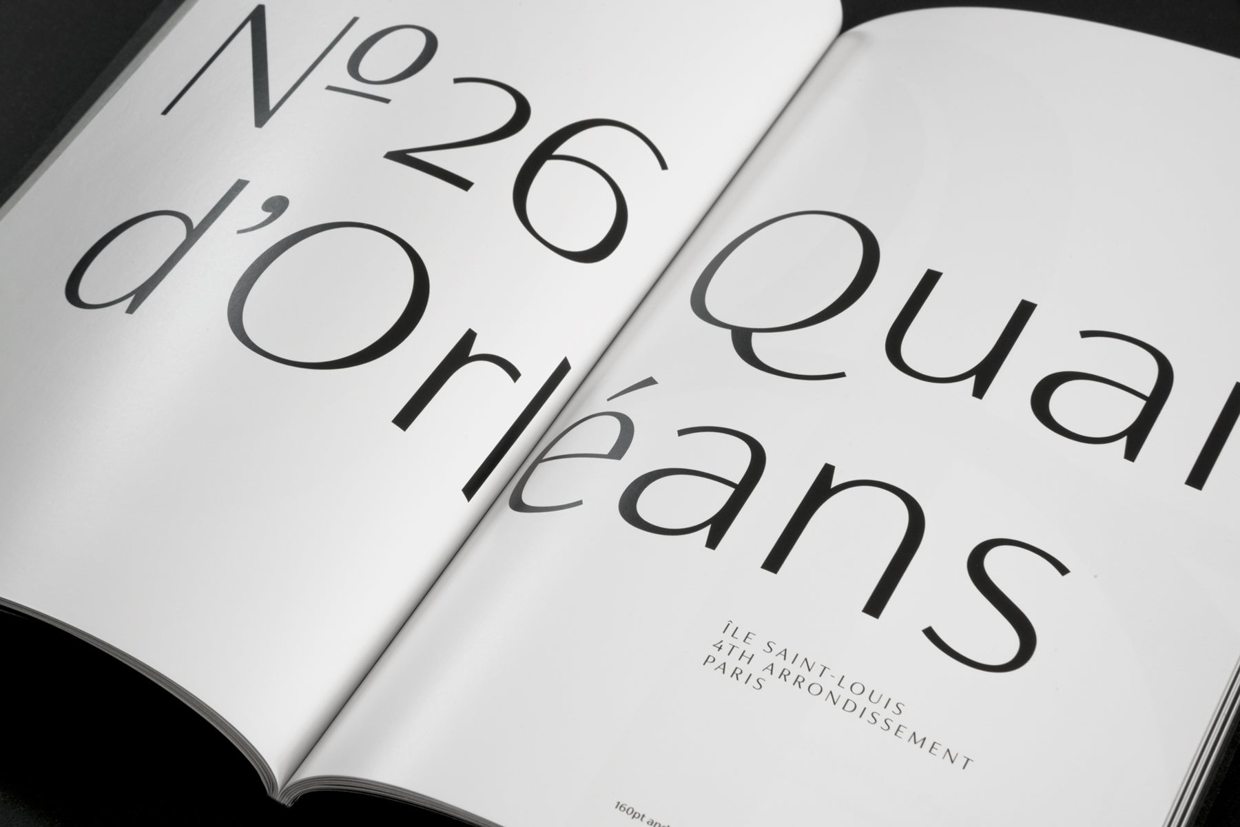 FS Siena | Contrasted sans serif typeface for luxury brands.