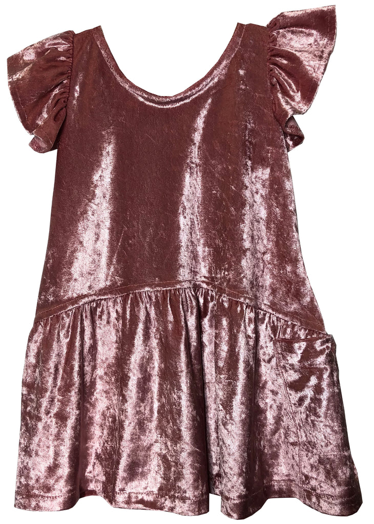 Cami Rose Velvet Dress