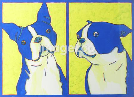 A print of two Boston Terriers