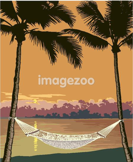 hammock between palms