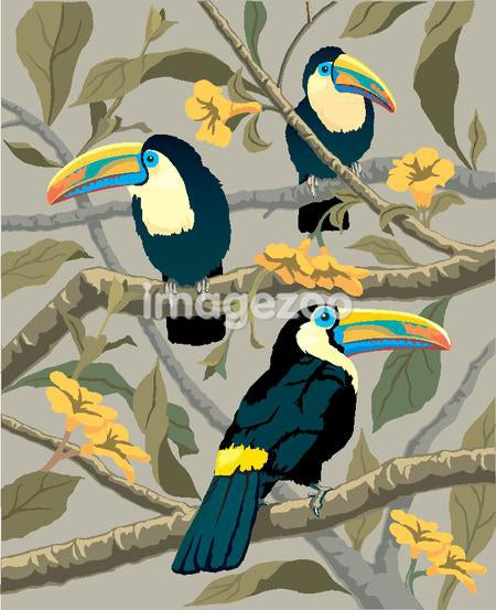 Tropical birds perched on the branches of a tree