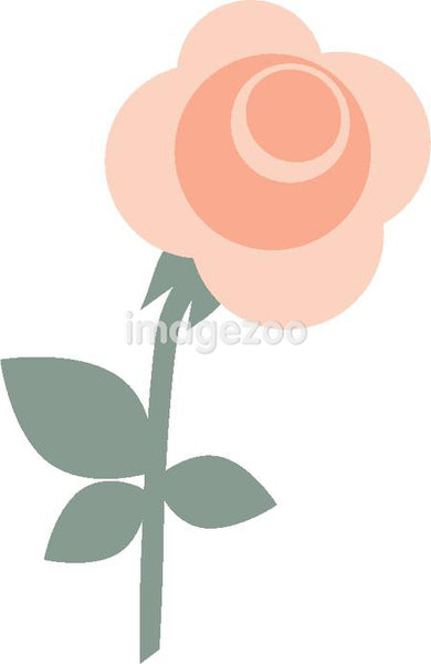 An illustration of a pink rose