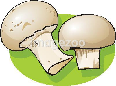 Drawing of two mushrooms