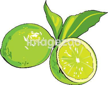 A drawing of sliced lime