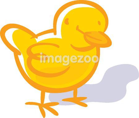 Drawing of a chick