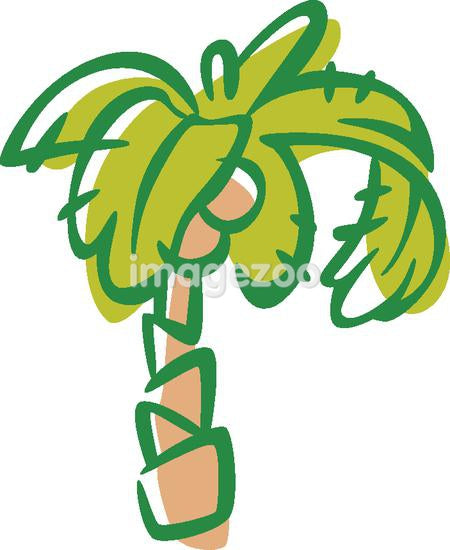 Drawing of a coconut tree