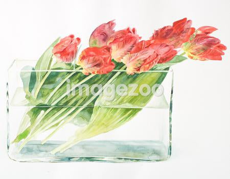 A bouquet of tulips in a rectangular vase