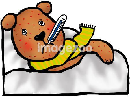 A bear with chicken pox with a thermometer in his mouth