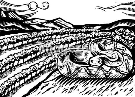 Illustration of a snake