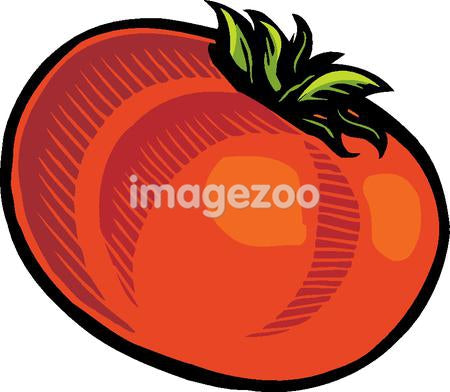 Illustration of a tomato