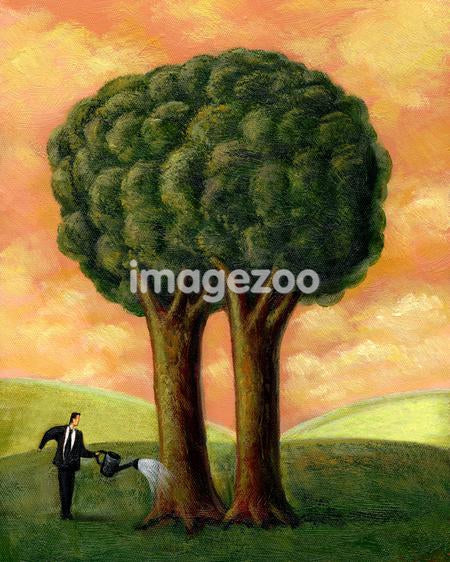 Businessman watering a tree with two trunks