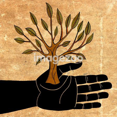 the palm of a hand holding a small tree