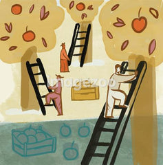 A drawing of people climbing ladders to harvest fruit