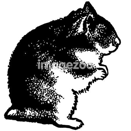 A black and white version of an illustration of a hamster standing on its hind legs