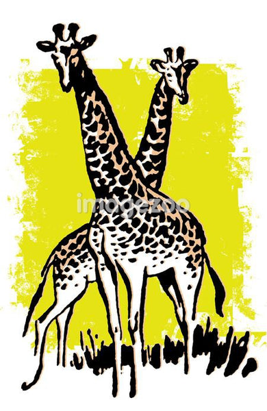 An illustration on a green background of two giraffes